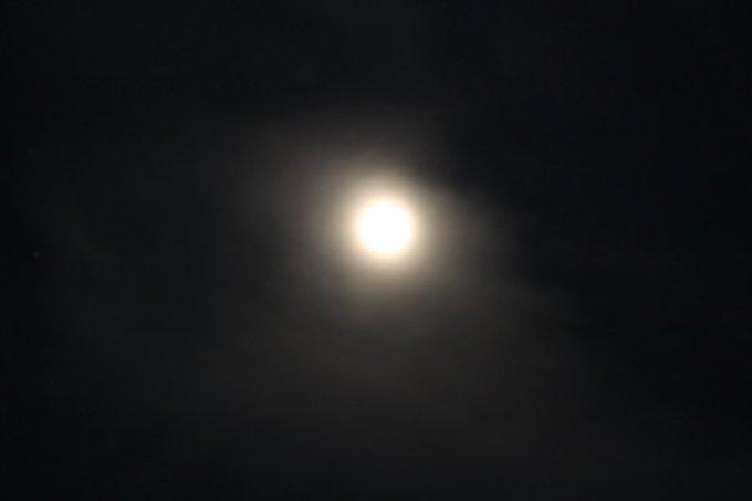 full_moon_on_a_dark_night_by_dragon1600-d4s6sv8