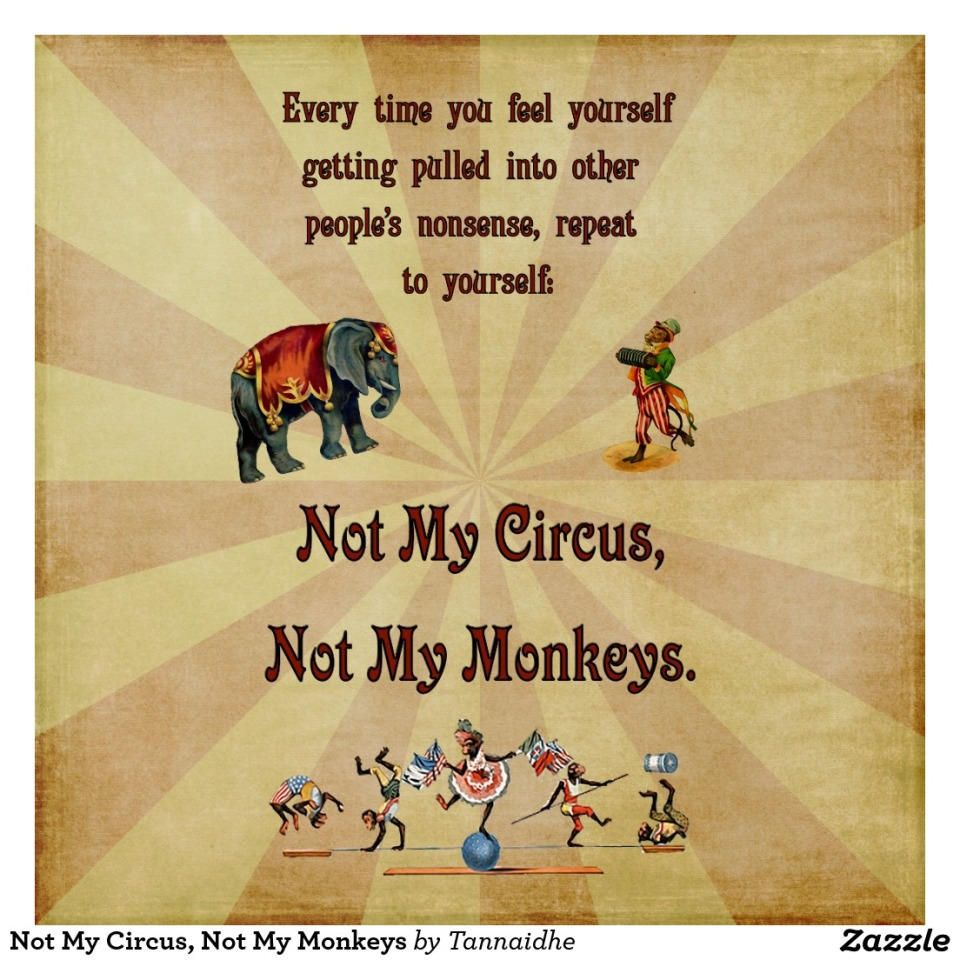 not_my_circus_not_my_monkeys_poster-rc84903c43b174247b01ca0072c7c72a9_is56p_8byvr_1024