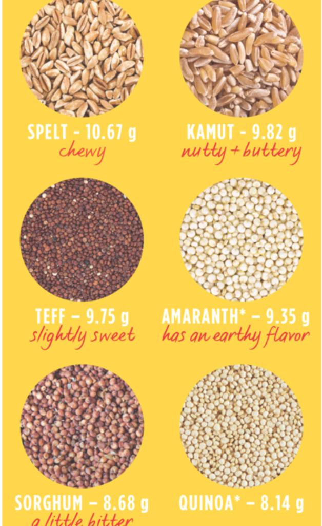 protein grains