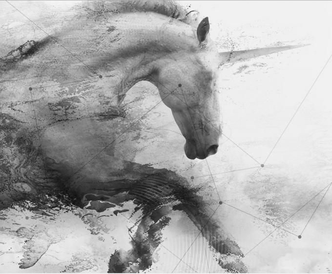 unicorn me