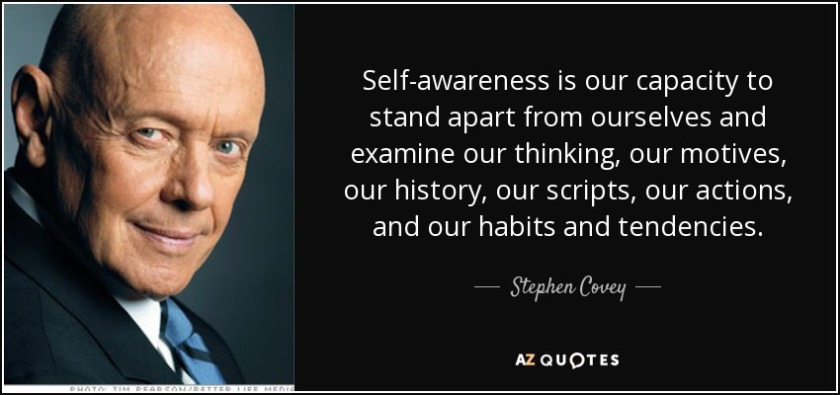 quote-self-awareness-is-our-capacity-to-stand-apart-from-ourselves-and-examine-our-thinking-stephen-covey-83-56-60