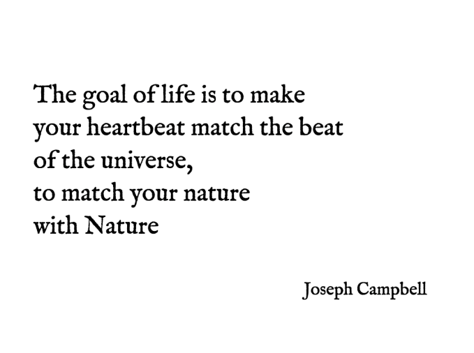 The-goal-of-life-is-to-make-your-heartbeat-match-the-beat-of-the-universe-to-match-your-nature-with-Nature-Joseph-Campbell