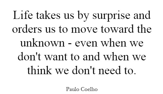 life-takes-us-by-surprise-and-orders-us-to-move-toward-the-unknown-even-when-we-dont-want-to-and-quote-1
