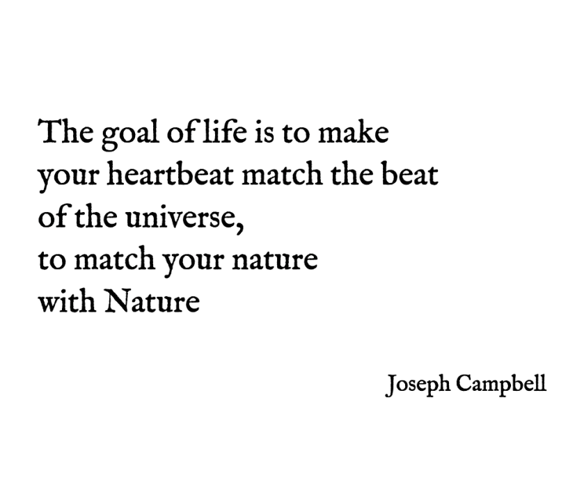 The-goal-of-life-is-to-make-your-heartbeat-match-the-beat-of-the-universe-to-match-your-nature-with-Nature-Joseph-Campbell.png