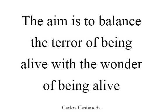 the-aim-is-to-balance-the-terror-of-being-alive-with-the-wonder-of-being-alive-quote-1.jpg